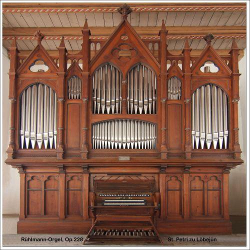 Löbejün Orgel Motiv 1