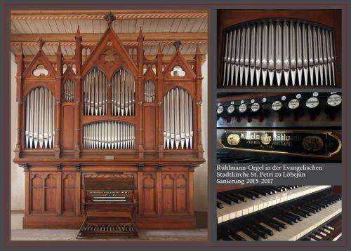 Löbejün Orgel Motiv 2